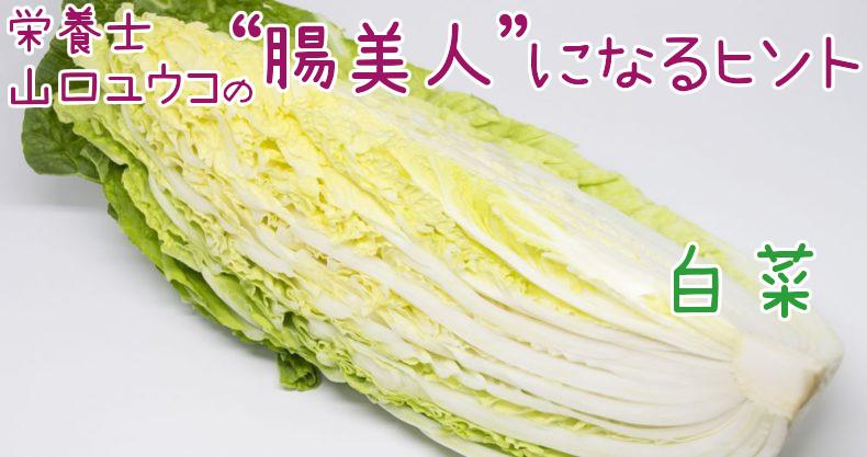 冬の主役!白菜の栄養とは